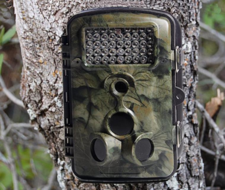 Camera caça